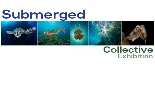 Submerged Collective